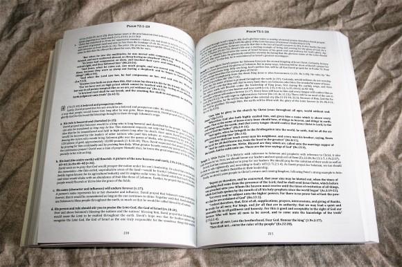 The Preacher's Outline & Sermon Bible - Psalms Part 2 (14)