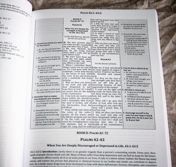 The Preacher's Outline & Sermon Bible - Psalms Part 2 (9)