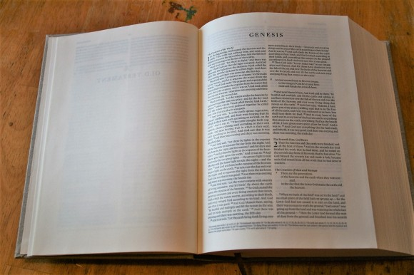 ESV Journaling Bible Interleaved Edition (3)