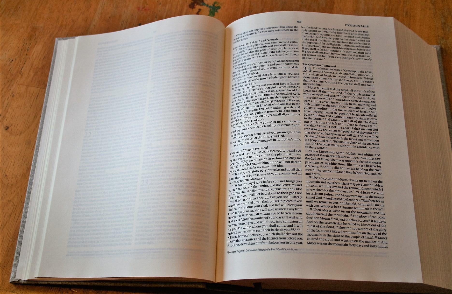 Crossway's ESV Journaling Bible Interleaved Edition Review - Bible