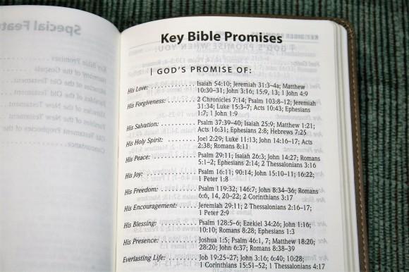 Hendrickson Personal Size Giant Print Reference Bible KJV (11)
