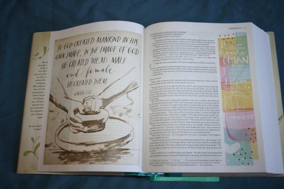 NIV Beautiful Word Bible (10)