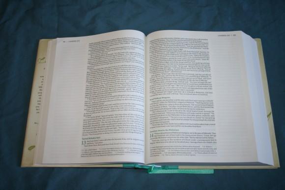 NIV Beautiful Word Bible (11)