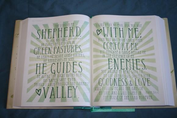 NIV Beautiful Word Bible (12)