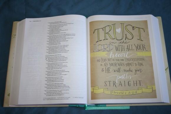 NIV Beautiful Word Bible (13)