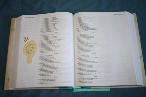 NIV Beautiful Word Bible (14)