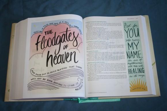 NIV Beautiful Word Bible (15)