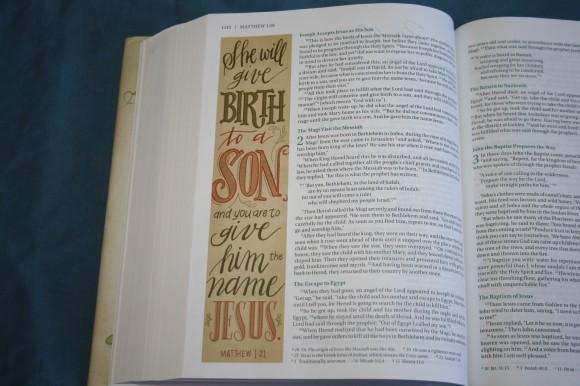 NIV Beautiful Word Bible (16)