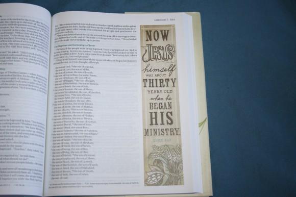 NIV Beautiful Word Bible (19)