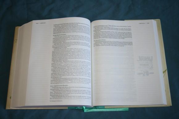 NIV Beautiful Word Bible (20)