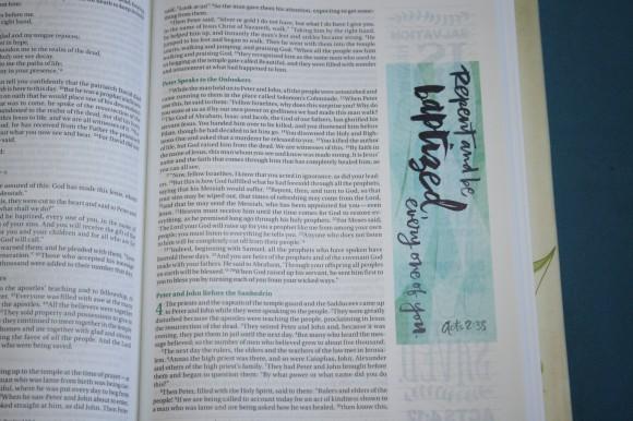 NIV Beautiful Word Bible (22)