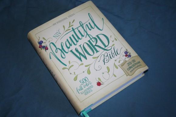 NIV Beautiful Word Bible (5)