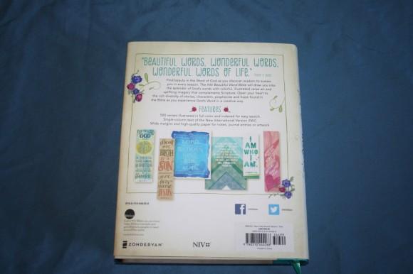 NIV Beautiful Word Bible (6)