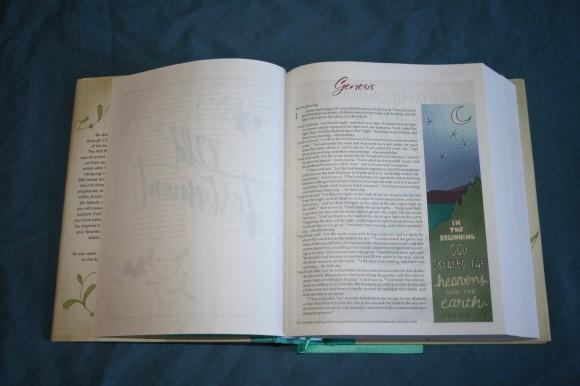 NIV Beautiful Word Bible (7)