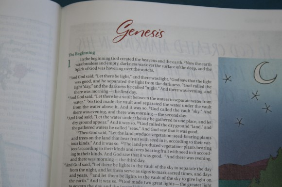 NIV Beautiful Word Bible (8)