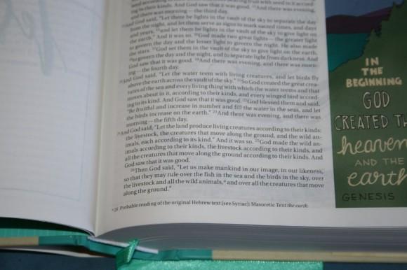NIV Beautiful Word Bible (9)