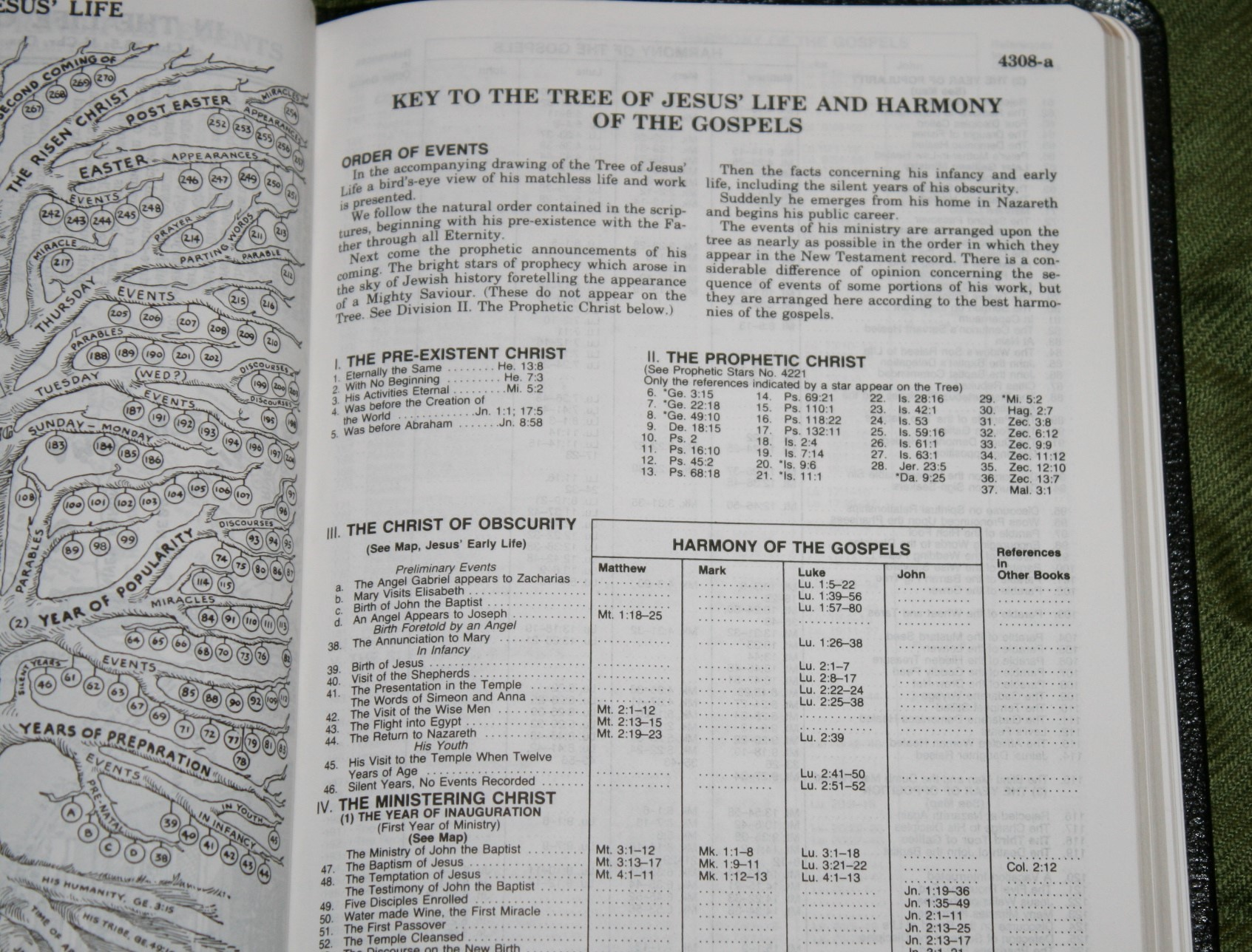 Handy Size Thompson Chain Reference Bible KJV (191)