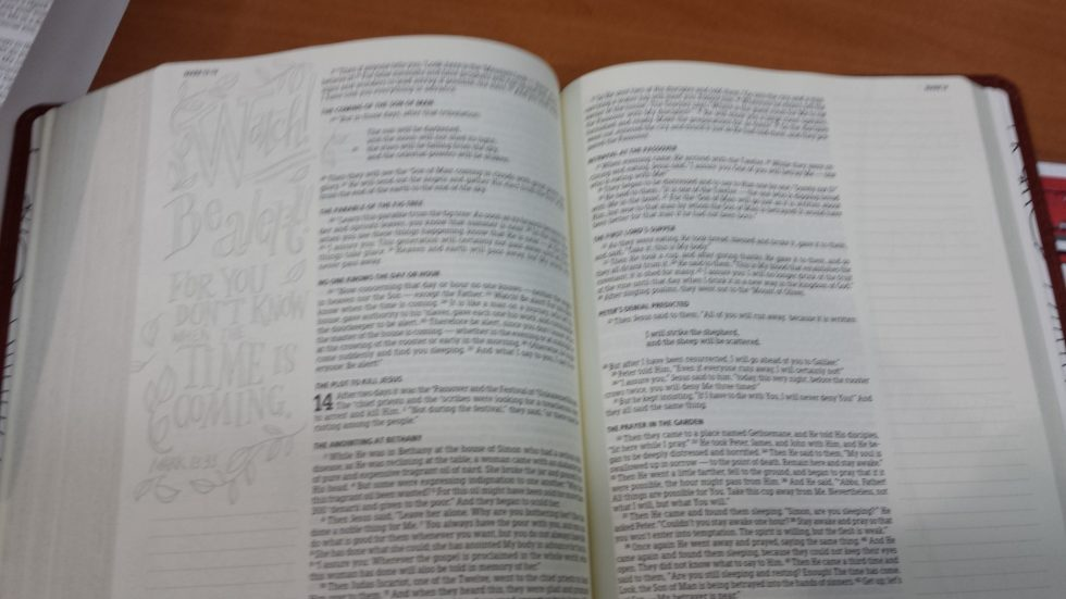Holman Illustrators Notetaking Bible (5)