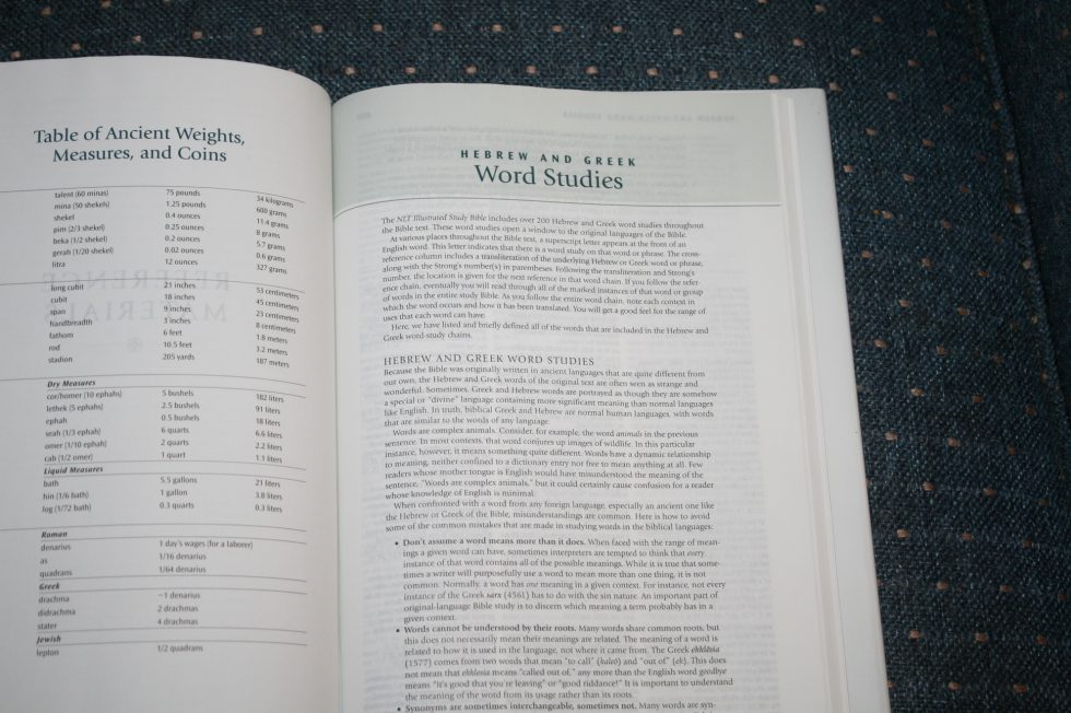 NLT Illustrated Study Bible (31)