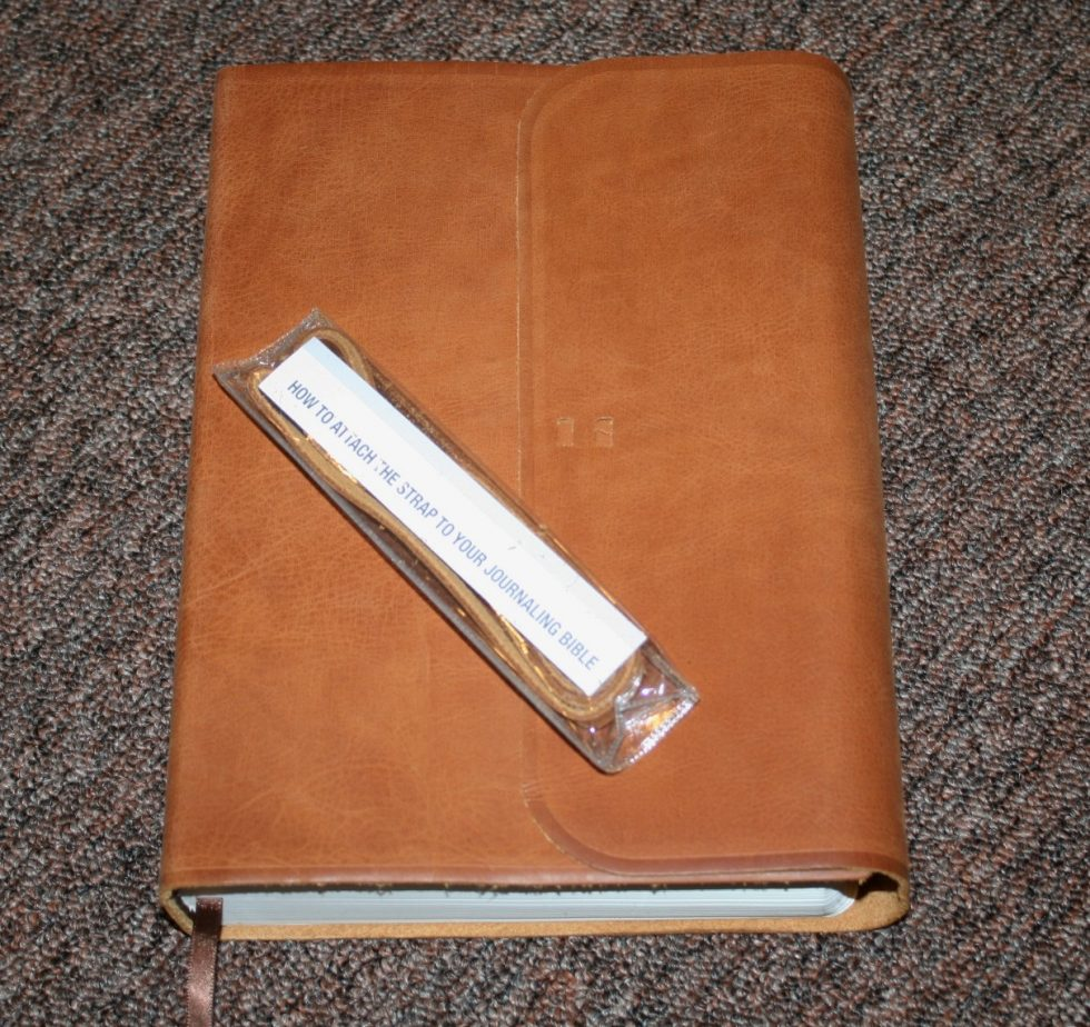 ESV Single Column Journaling Bible Large Print Edition (11)