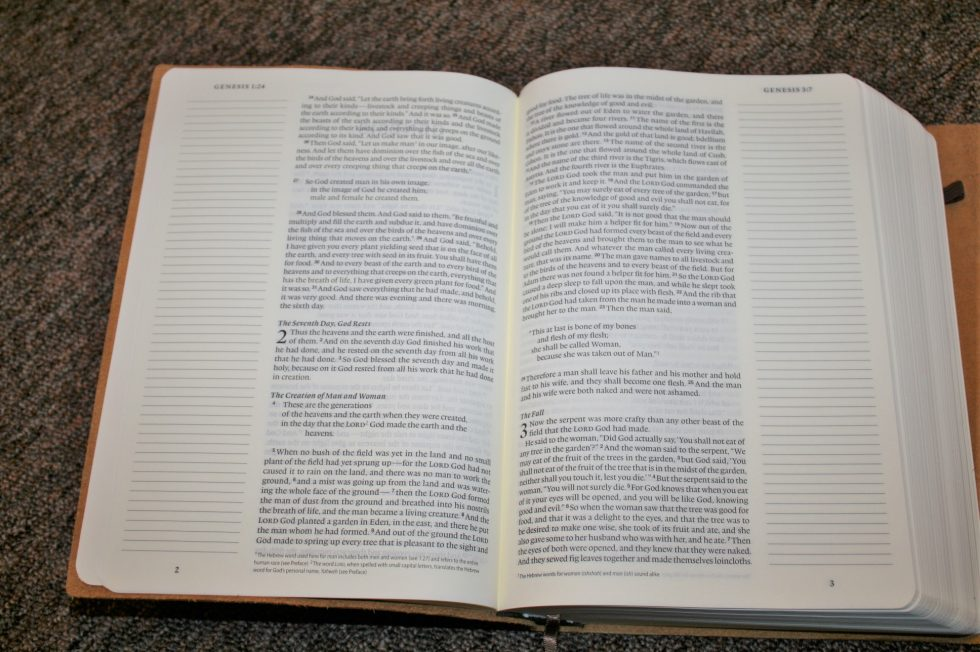 ESV Single Column Journaling Bible Large Print Edition (18)
