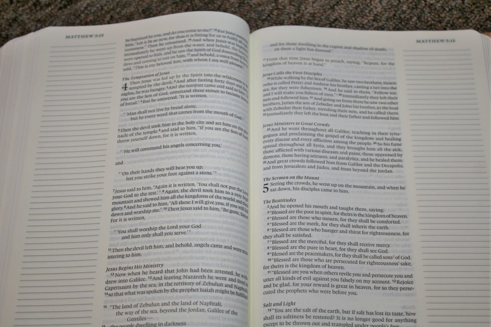 ESV Single Column Journaling Bible Large Print Edition (24)