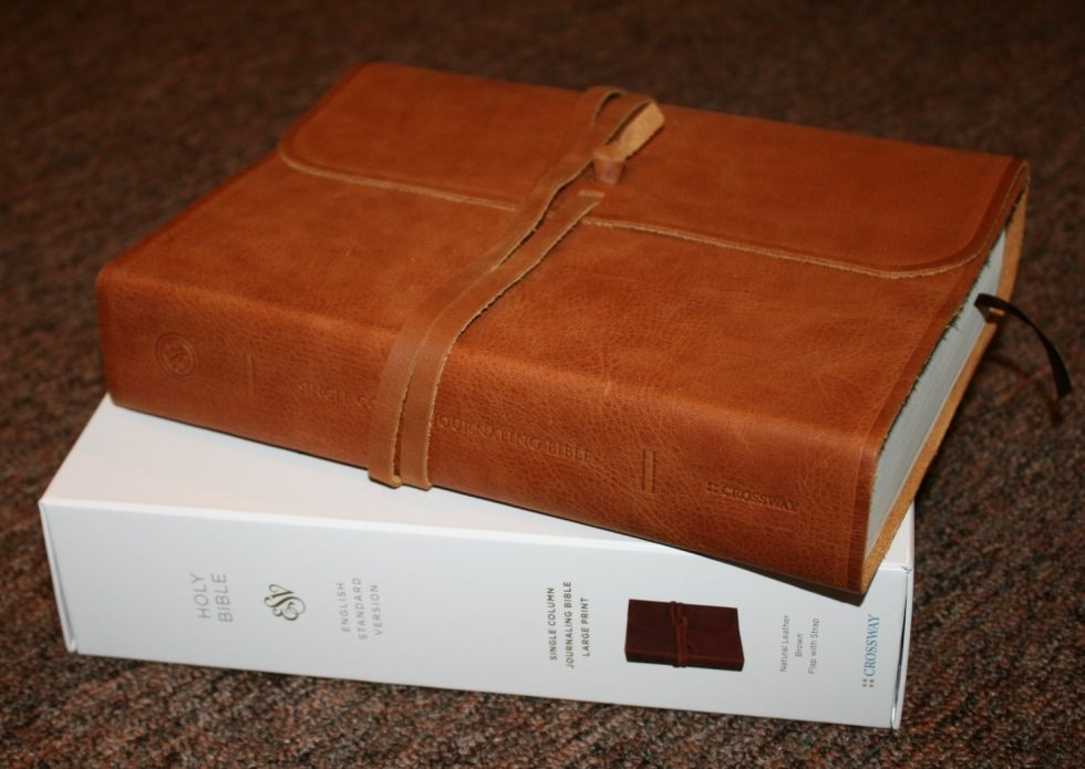 ESV Single Column Journaling Bible Large Print Edition (31)
