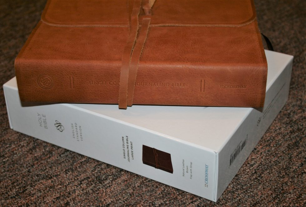 ESV Single Column Journaling Bible Large Print Edition (32)