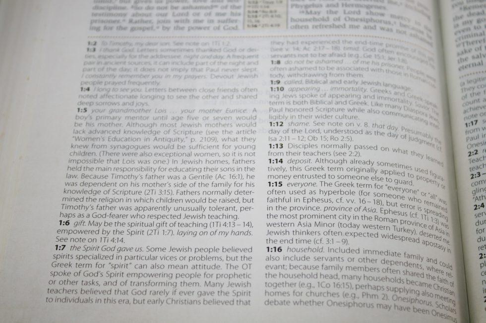NIV Cultural Backgrounds Study Bible  (15)