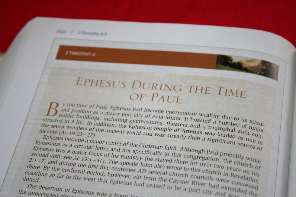 NIV Cultural Backgrounds Study Bible  (19)