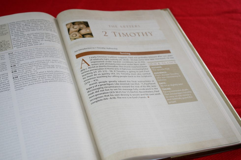 NIV Cultural Backgrounds Study Bible  (6)
