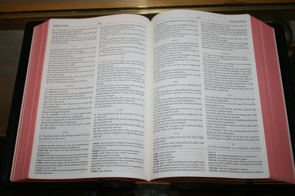 The Reformation Heritage KJV Study Bible (52)