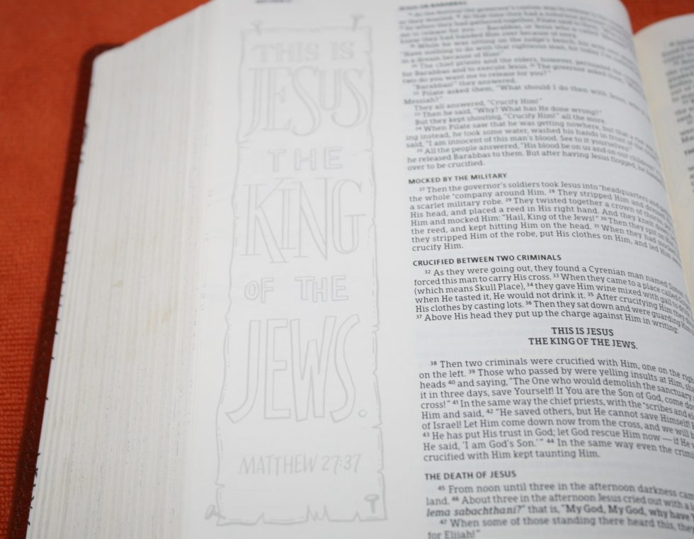 hcsb-illustrators-notetaking-bible-15