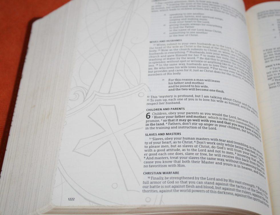 hcsb-illustrators-notetaking-bible-5