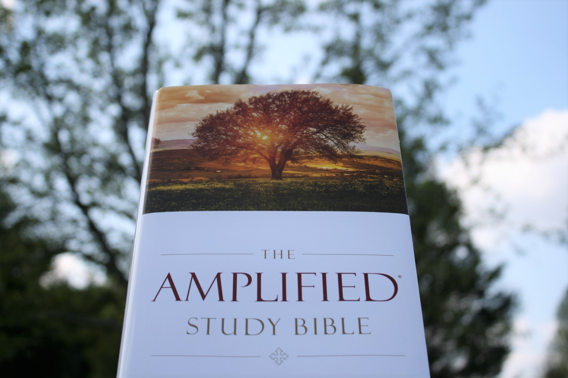 Amplified Study Bible - Olive Tree Bible Software