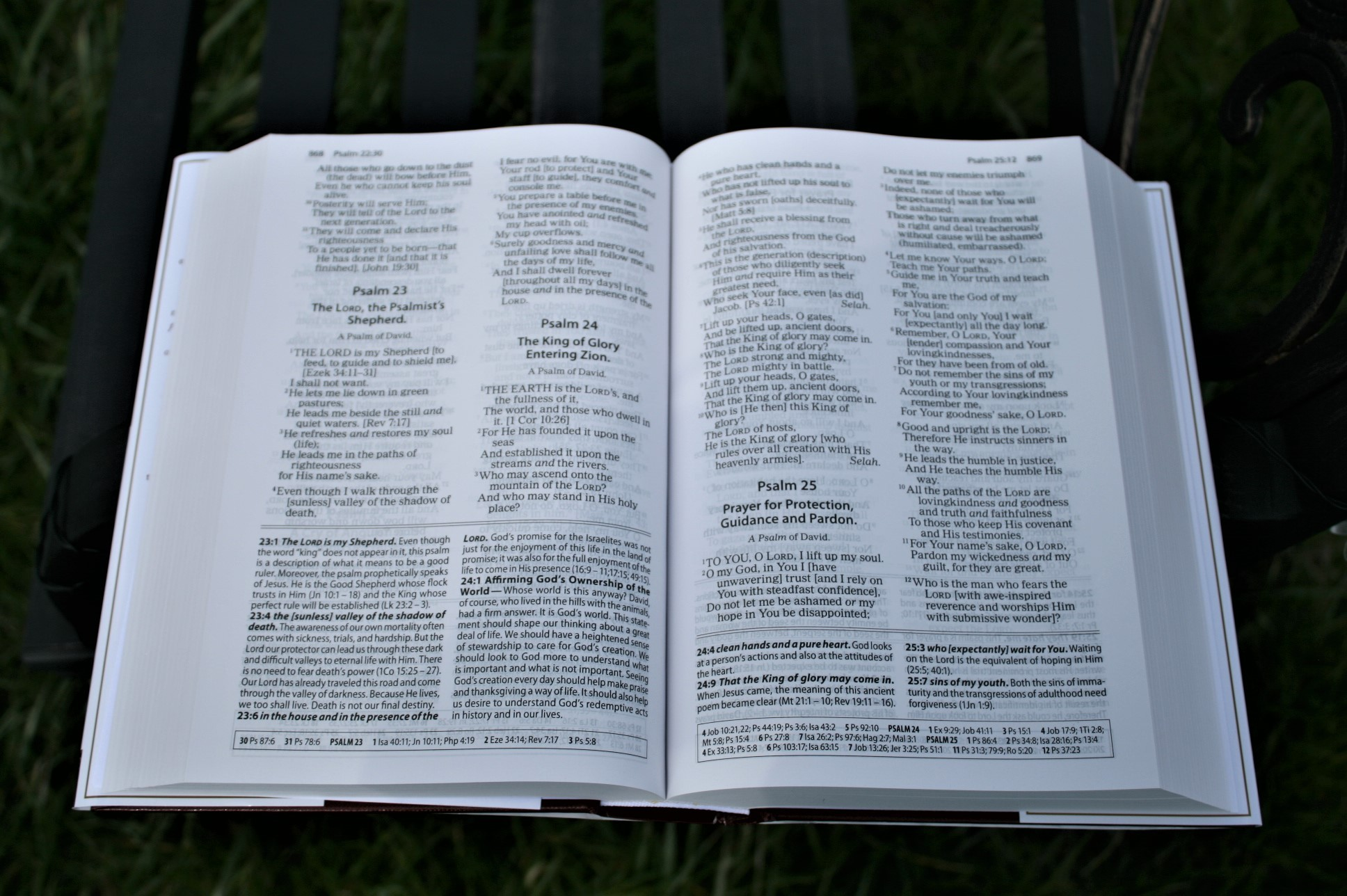 Amplified Study Bible Review - Bible Buying Guide
