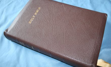 Best Reference Bibles for Pastors and Preachers