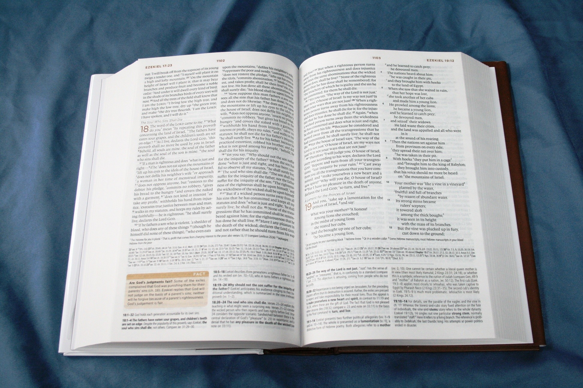 Crossway ESV Global Study Bible 003