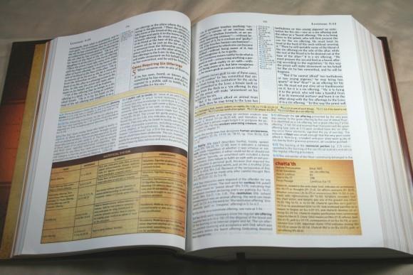 Holman HCSB Study Bible 017