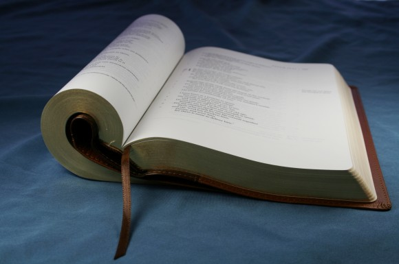 ESV Single Column Legacy Bible 019