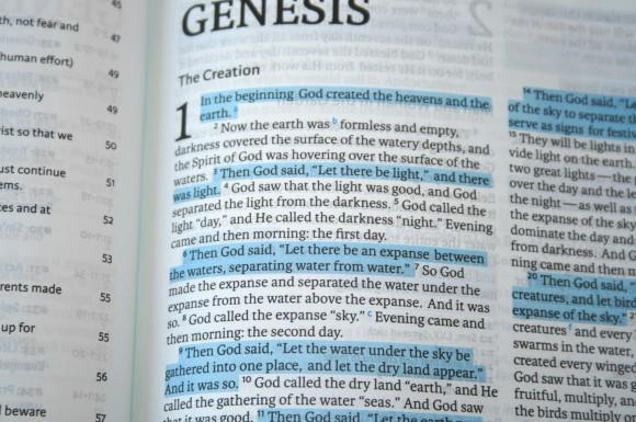 HCSB Life Essentials Study Bible 017