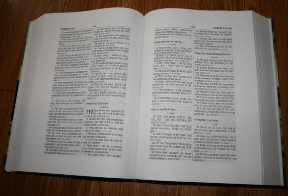 Hendrickson Large Print Wide Margin Bible KJV 004