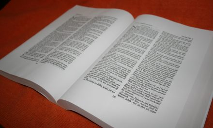 LCBP Mid-Size Wide-Margin Vinyl – Bible Review