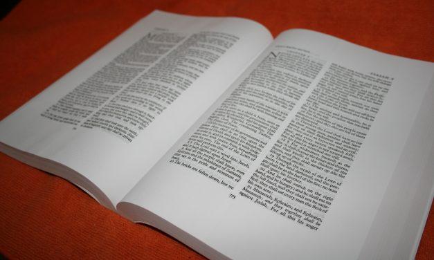 LCBP Mid-Size Wide-Margin Vinyl – Bible Review