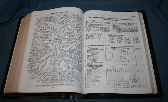 LCBP Thompson Chain Reference Bible 089