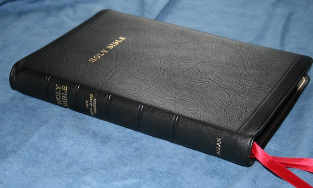 Allan New King James Version Classic Reference Edition Black Highland Goatskin – Review
