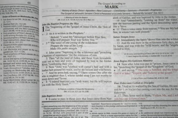 Dake Annotated Reference Bible NKJV 020