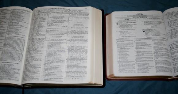 Dake Annotated Reference Bible NKJV 041