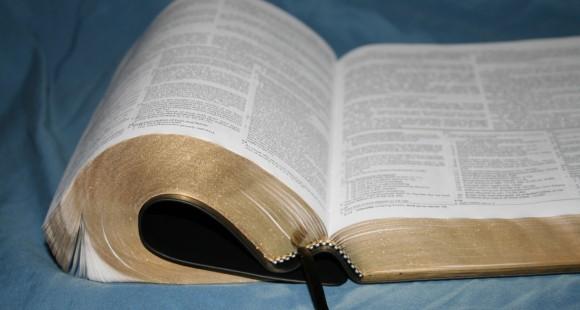 Dake Annotated Reference Bible NKJV 046