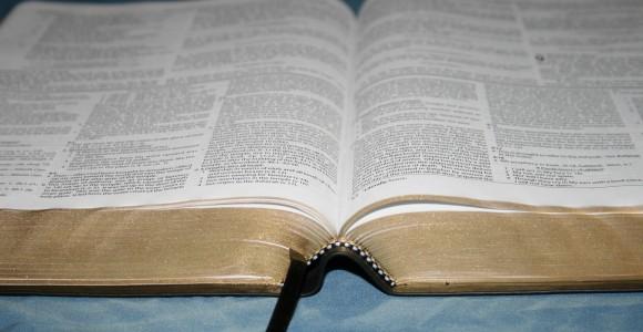 Dake Annotated Reference Bible NKJV 047